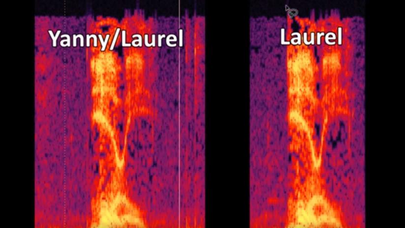 'Yanny o Laurel' divide en dos Internet: Hasta Stephen King y satanistas discuten el audio viral