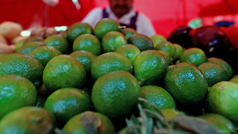 Chilenos sufren la escasez de agua debido a la moda europea de consumir aguacate