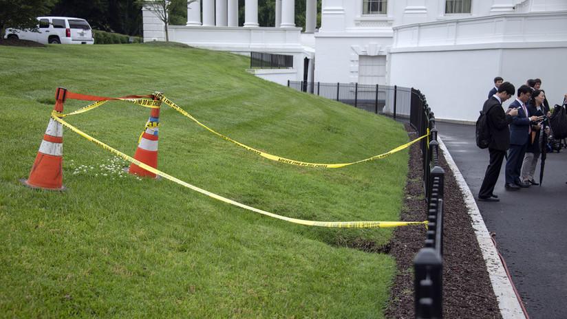 """""""Obra de Satán"""": Se abre un agujero en el césped de la Casa Blanca (FOTOS)"""