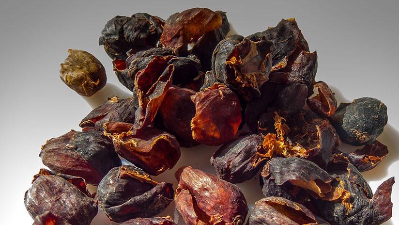 Antes la echaban a la basura: La cáscara del café vale seis veces más que sus granos
