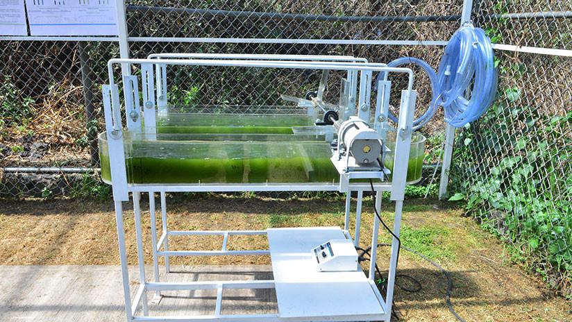 VIDEO, FOTOS: Crean en México planta de tratamiento de aguas que capta el CO2