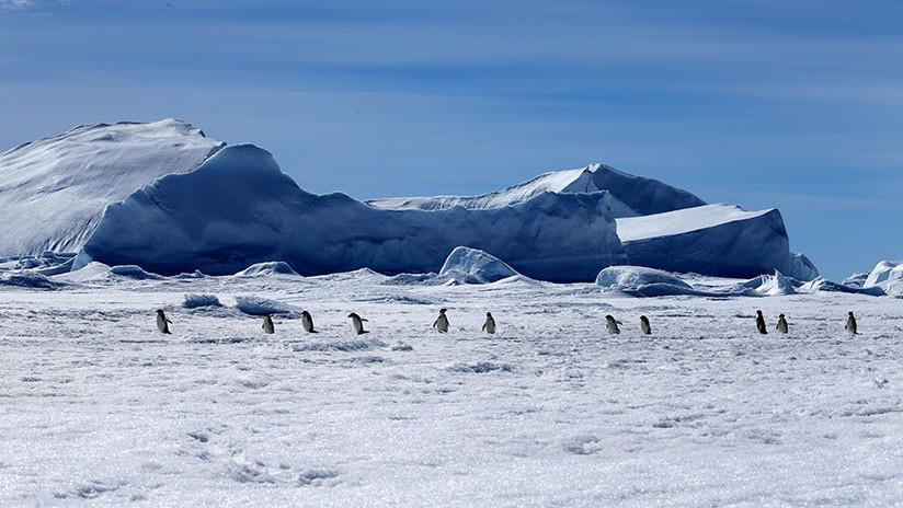 Hallan enormes cañones 'escondidos' en laAntártida (y puede ser una mala noticia para el planeta)