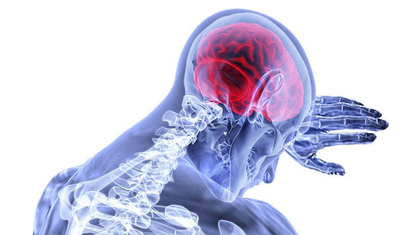 Descubren el segundo \'cerebro\' humano, que se ubica al final del ...