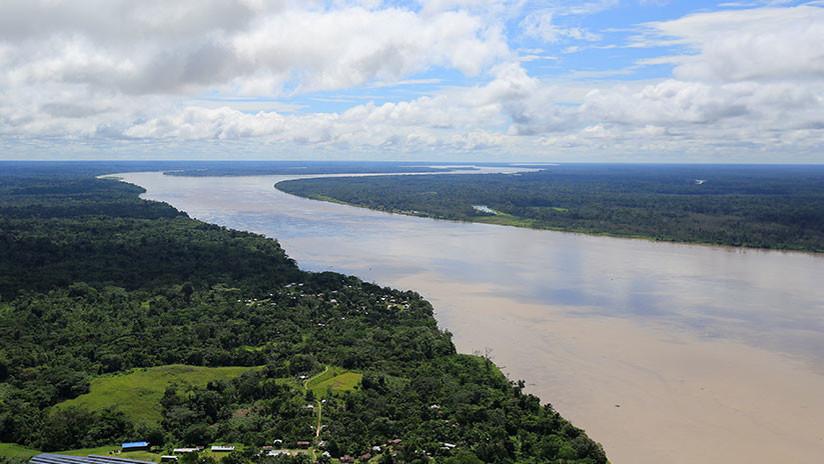 Contaminación de la Amazonía: ¿Quién está detrás de la destrucción de la selva más grande del mundo?