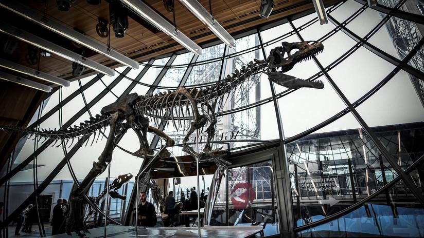 Subastan por 2 millones de euros esqueleto de un dinosaurio desconocido y decepcionan a científicos