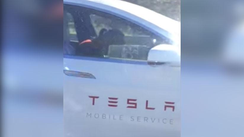 VIDEO: Un empleado de Tesla parece quedarse dormido al volante con el piloto automático en marcha