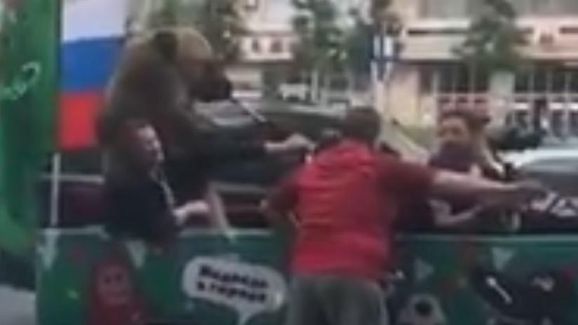 VIDEO: Un oso tocando la trompeta en un coche sorprende a los hinchas en el centro de Moscú