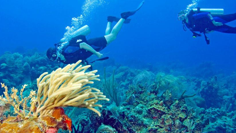 Unesco saca la barrera de arrecifes de Belice de la Lista de Patrimonio Mundial en Peligro