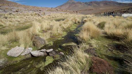 Agua del río Silala, al sur de La Paz, Bolivia.