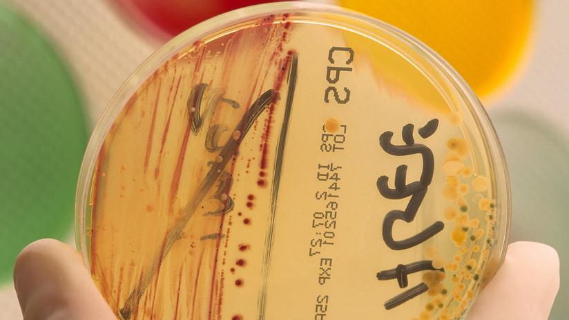 Hallan dos biomarcadores de la sepsis que podrían salvar miles de vidas