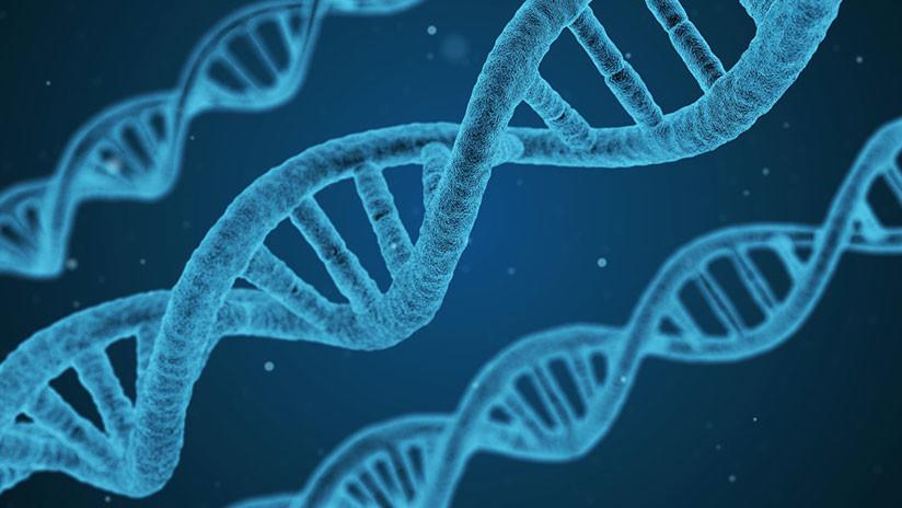 Científicos encuentran un gen capaz de ayudar a 'frenar' el cáncer