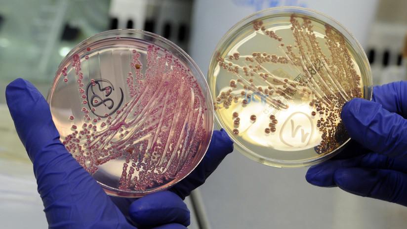Modifican la inmunoterapia para que no solo pueda con el cáncer, sino con las bacterias más letales