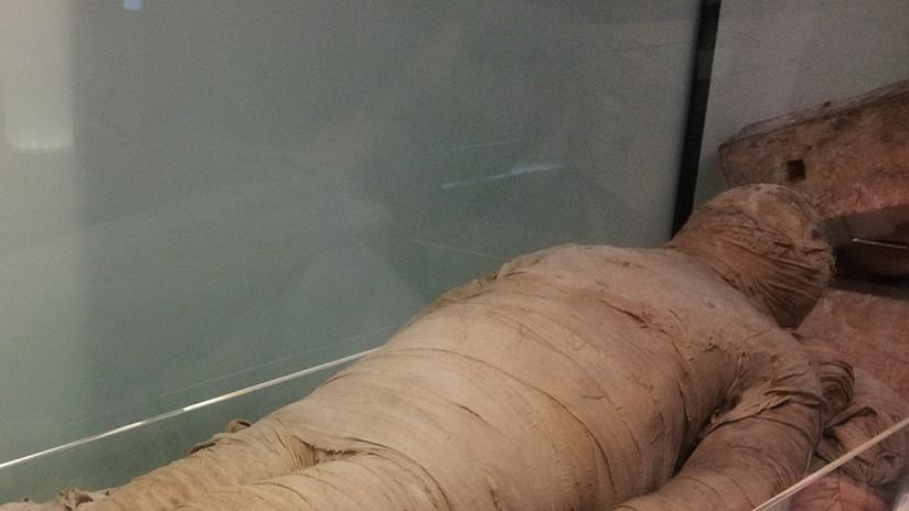 FOTO: Una momia bicéfala con cabeza de niña y de cocodrilo es expuesta por primera vez al público
