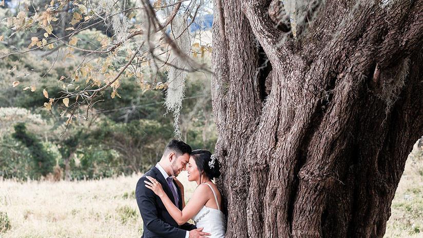 VIDEO: Recién casados se salvan por segundos de quedar aplastados por una rama de árbol en EE.UU.