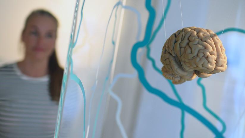 """""""El Big Bang del alzhéimer"""": Científicos identifican el momento en que comienza esa enfermedad"""