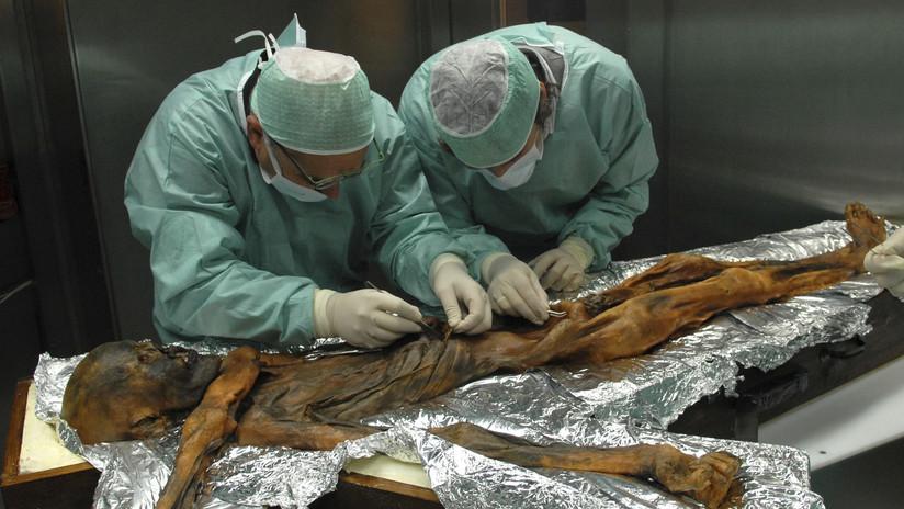 Revelan la última comida del Ozti antes de que le asesinaran hace 5.300 años