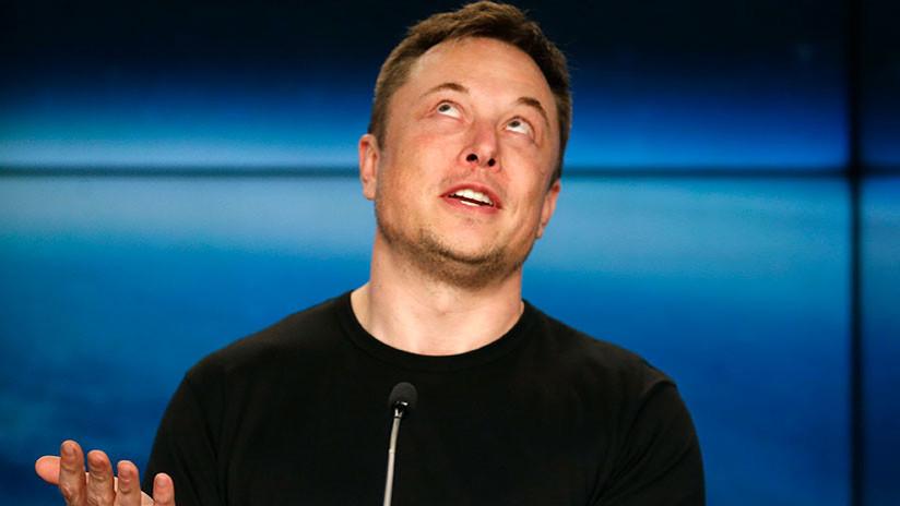 Musk llama