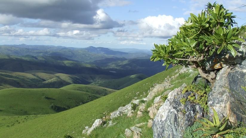 Encuentran las evidencias más antiguas de vida terrestre