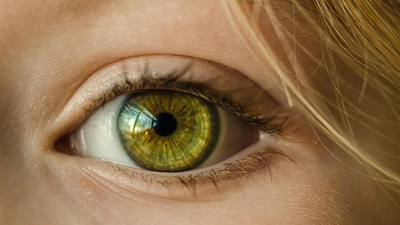 Comprueban que la ceguera puede ser reversible por medio de terapia genética