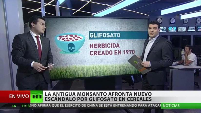 """""""Compañías como Monsanto venden productos pese a los daños que puede causar en la población"""""""