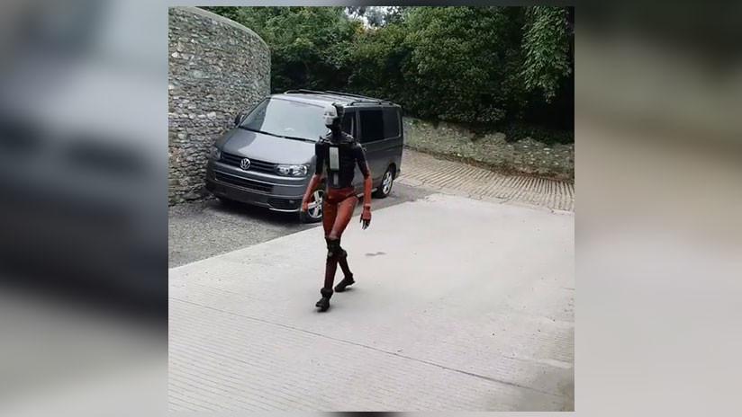 VIDEO: Un inquietante robot andante asusta a la Red