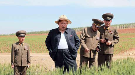 El líder de Corea del Norte, Kim Jong-un, inspecciona una granja del regimiento 810 del Ejército Popular, el 1 de junio de 2015