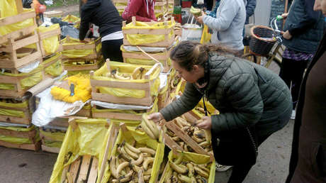 Una señora escoge bananas en la Feria del Productor al Consumidor de la Ciudad de Buenos Aires.