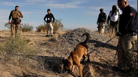 Agentes buscan rastros de fosas clandestinas en el Valle de Juárez, Chihuahua, México, el 18 de agosto de 2018.