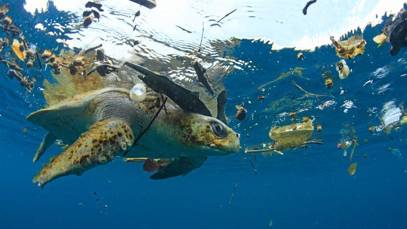 La isla de basura del Pacífico podría tener sus días contados