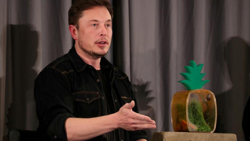 Una compañía de porno ofrece a Elon Musk dinero y marihuana para que actúe en uno de sus filmes