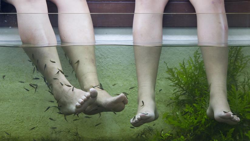 VIDEO: Una mujer pierde los dedos del pie tras una infección 'comehuesos' por una pedicura con peces