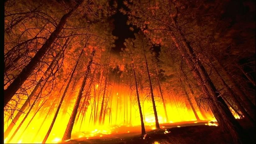 VIDEO: Un 'tornado de fuego' destruye una manguera con la que combatían las llamas