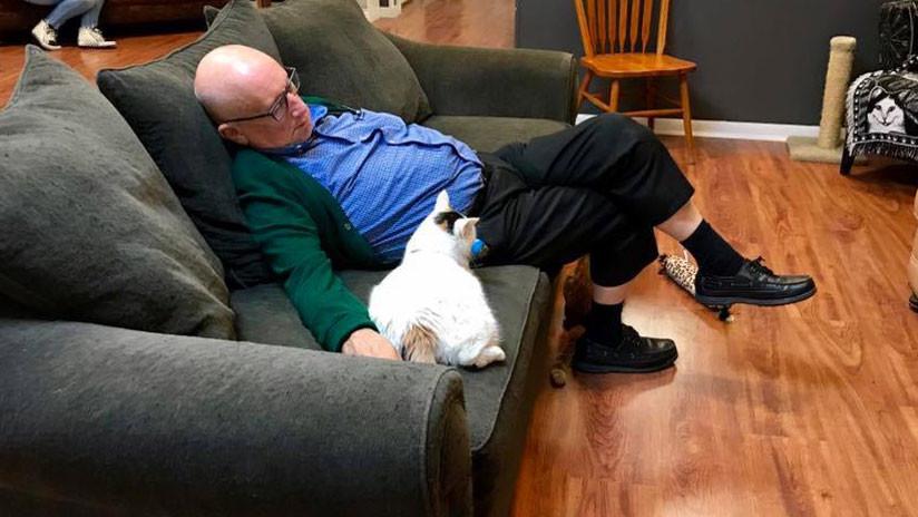 Las tiernas fotos del abuelito de los gatos que se volvieron virales