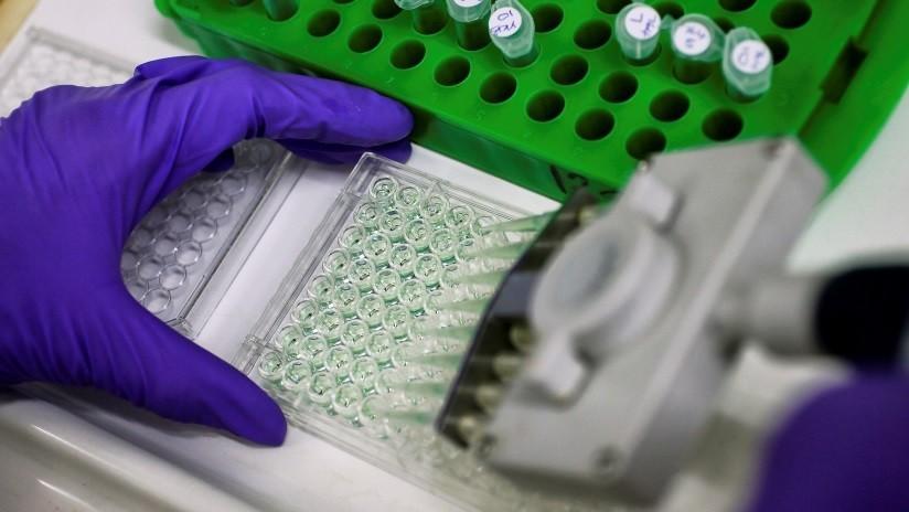 planta que mata las células cancerosas