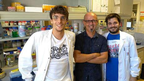 Jordi Pujols, Salvador Ventura y Samuel Peña, investigadores responsables de este nuevo hallazgo.