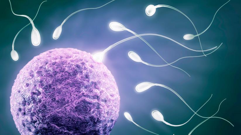 """Problema global"""": Alertan sobre una crisis de fertilidad masculina ..."""