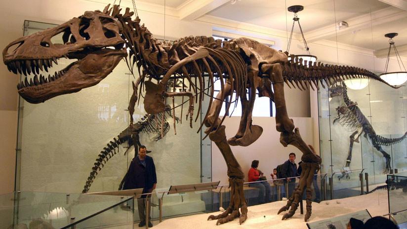 """Un videojuego recrea la versión """"más precisa de la historia"""" del Tiranosaurio Rex"""