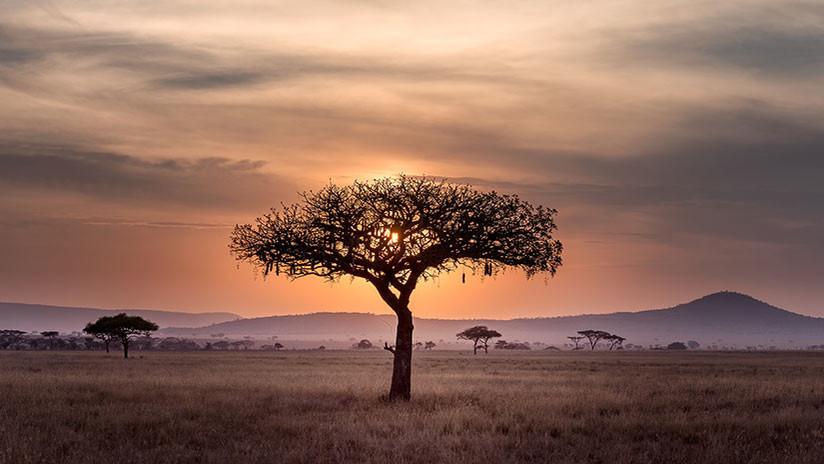 Sudáfrica: Ciudad aprueba aplicar reforma agraria nacional y expropriar tierras a población blanca