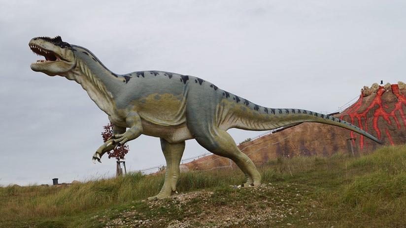 Finalmente descubierto: ¿De qué le servían al Tiranosaurio Rex sus diminutos brazos?