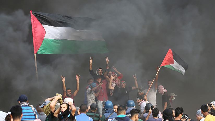 """Un verdadero David contra Goliat"": Imagen épica de manifestante palestino se vuelve viral en redes"