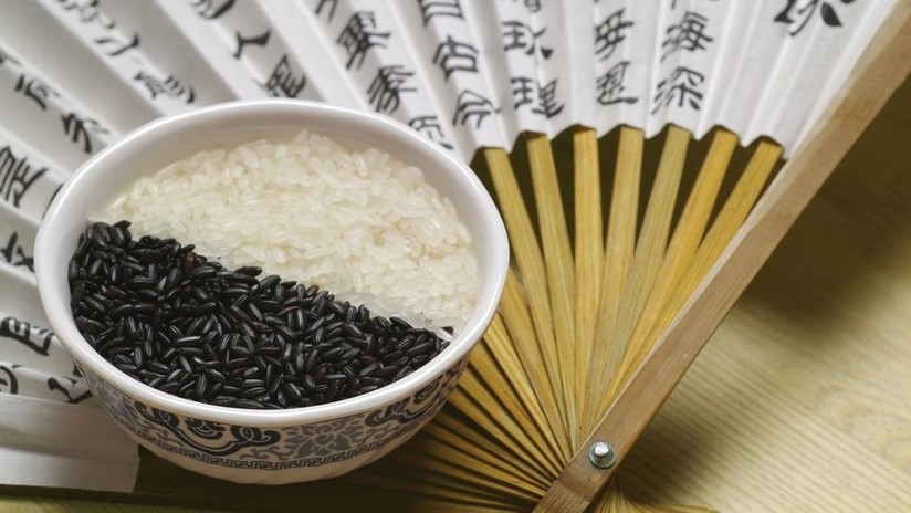China cosecha con éxito arroz de agua salada que podría alimentar a 80 millones de personas (VIDEO)