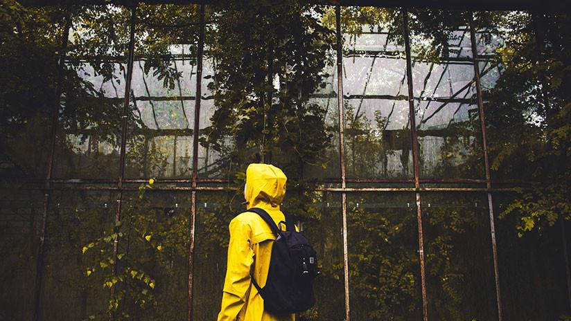 FOTOS: Científico se encierra en invernadero para concienciar sobre el cambio climático y no aguanta