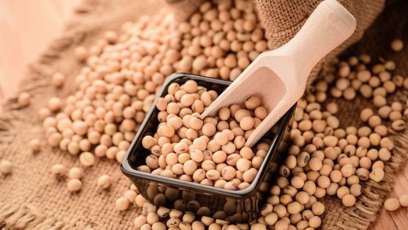 Rusia puede ser el reemplazo para China de las exportaciones estadounidenses de soja