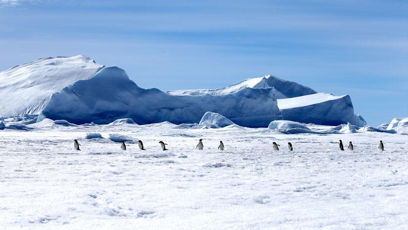 VIDEO: Encuentran reliquias de continentes perdidos debajo del hielo de la Antártida