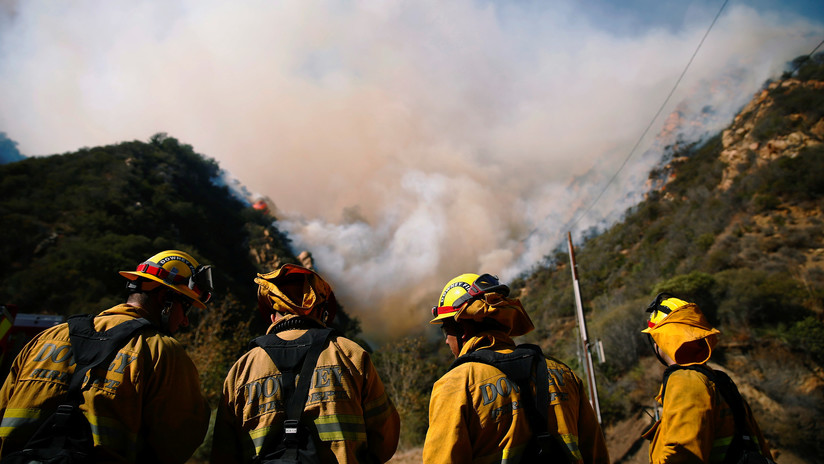 """""""Irresponsable e insultante"""": los tuits de Trump sobre los incendios indignan a los bomberos"""