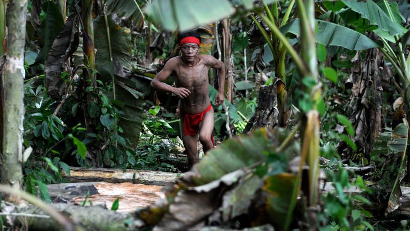 Revelan el secreto de una tribu del Amazonas que ayuda a prolongar la vida