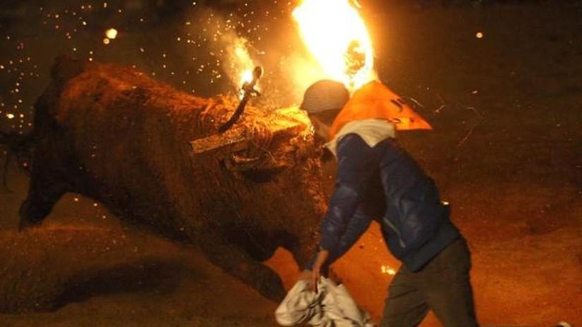 Lo inmovilizan y prenden fuego a la estructura de su cornamenta: El Toro de Júbilo en España (VIDEO)