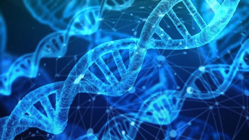 """""""Construir un atlas celular humano"""": Crean unas pinzas que pueden extraer ADN de una célula viva"""