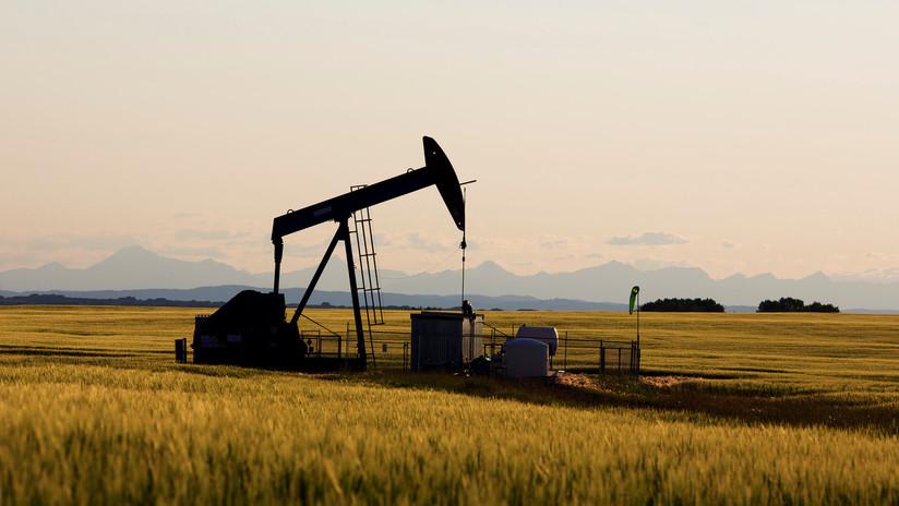 """""""El mundo no necesita precios de crudo más altos"""": Trump insta a la OPEP a no reducir la producción"""