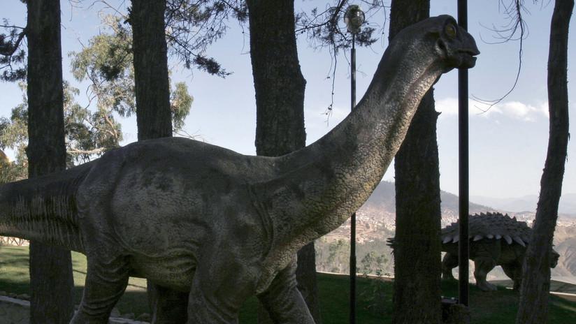 Un gigante del Jurásico: descubren una nueva especie de dinosaurios en Rusia